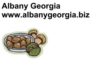Albany Georgia, www.albanygeorgia.biz